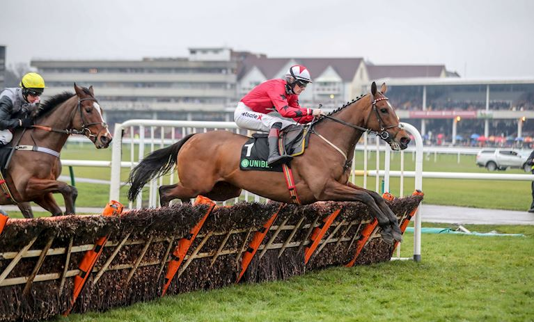 THE NEW ONE WINNING THE FOURTH UNIBET CHAMPION HURDLE TRIAL IN 2018.JPG