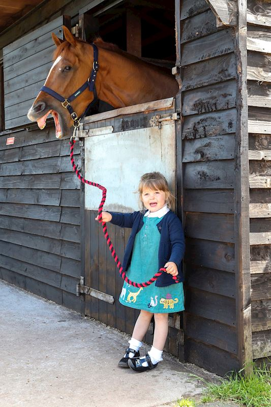(1) Dianne Sayer's granddaughter Pip with Sayer's in-form horse Redarna at their Hackthorpe stables, near Penrith.JPG