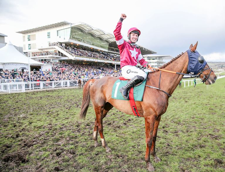 (3) Blow By Blow ridden by Donagh Meyler wins at Cheltenham in March 2018.JPG