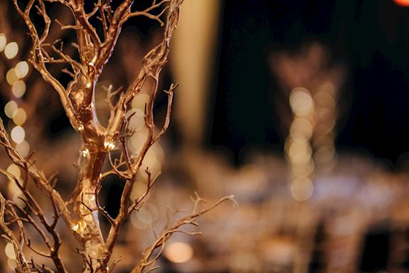 Gold painted mini trees as Christmas table centre pieces
