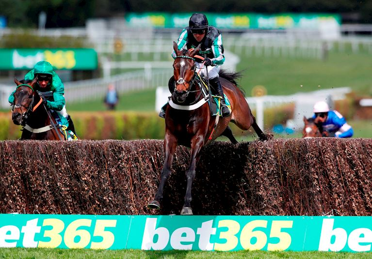 Altior on the way to becoming the first horse to win 19 successive jumps races.jpg