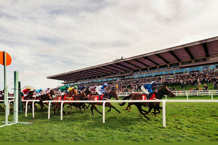 Sandown Park Royal Artillery Race Grandstand 2019.jpg